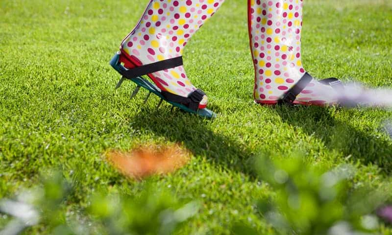 Caring For Your Lawn With Lawn Aerator Shoes
