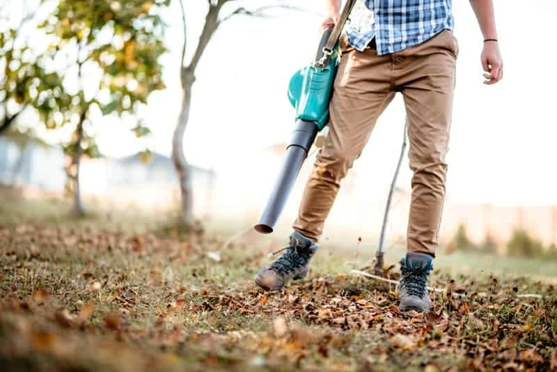 3 Reasons To Buy an Electric Leaf Blower Vs. Gas
