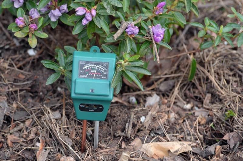 Best Soil Test Kits & Meters Buyers Guide