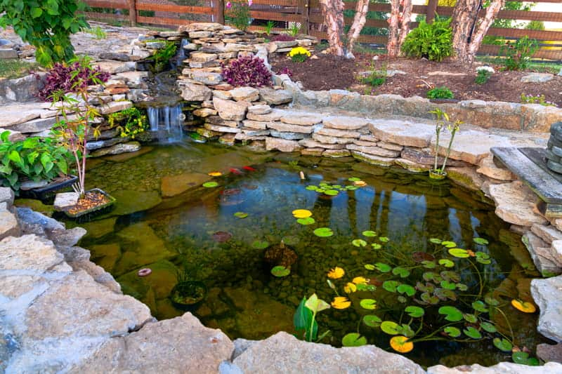 Best Pond Pumps For Backyard Ponds & Fountains