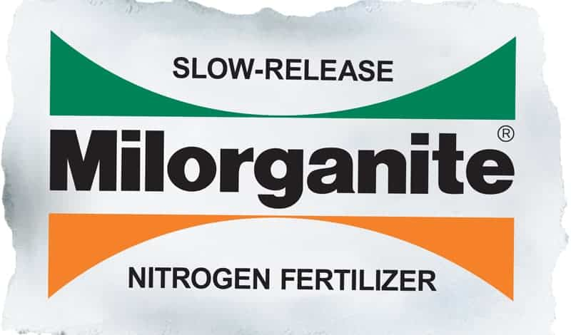 When to Apply Milorganite to Your Lawn