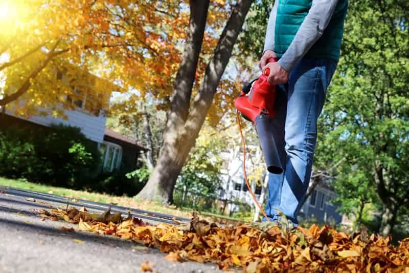 Best Electric Leaf Blower Reviews