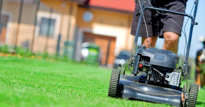 Best Push Lawn Mowers