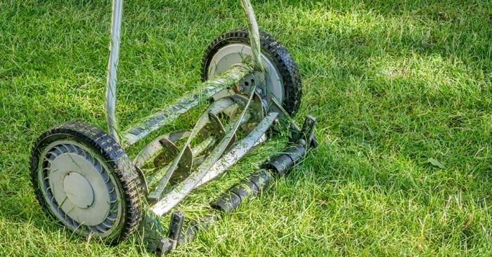 Best Reel Mower for Homeowners