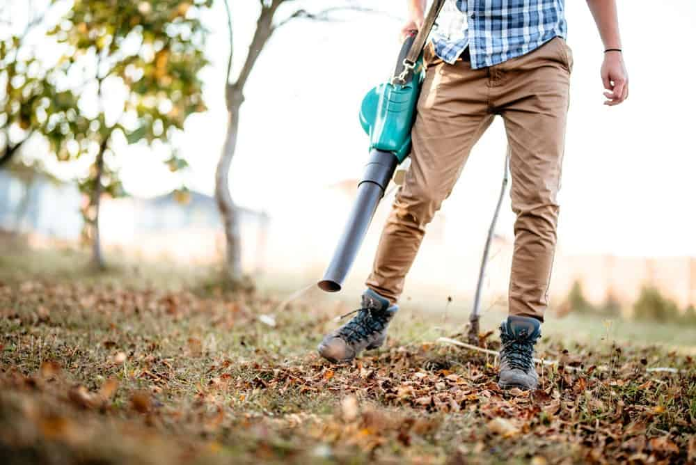 how to choose the best leaf vacuum