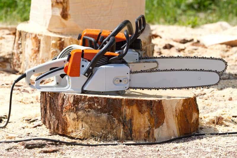 Chainsaws on Stump