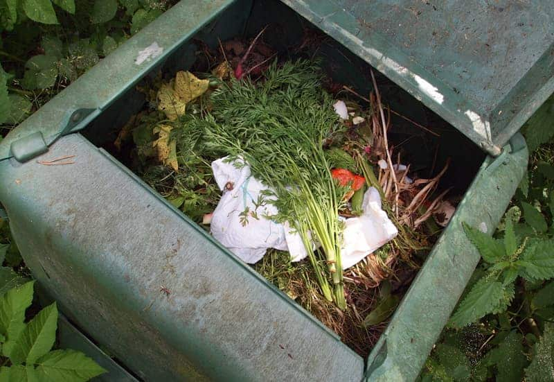 Enclosed Compost Bin
