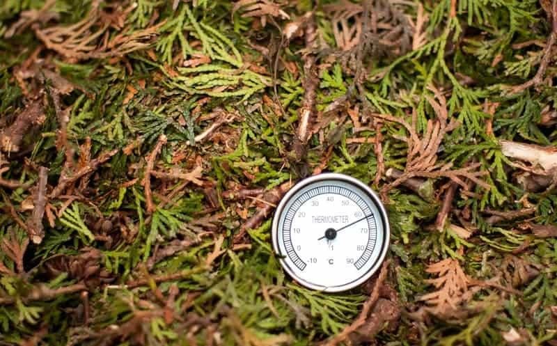 Hot vs Cold Composting