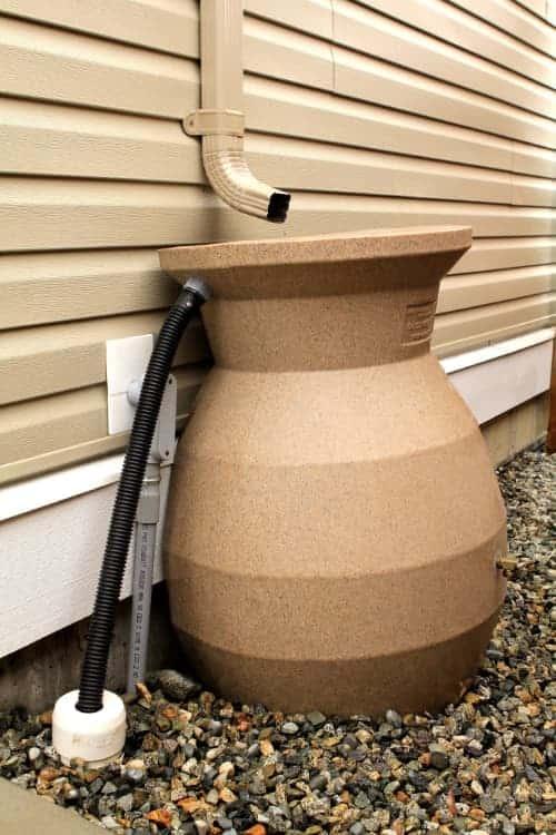 Rain Barrel Watering System
