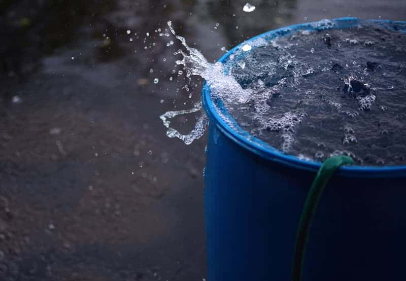 good rain barrel maintenance tips