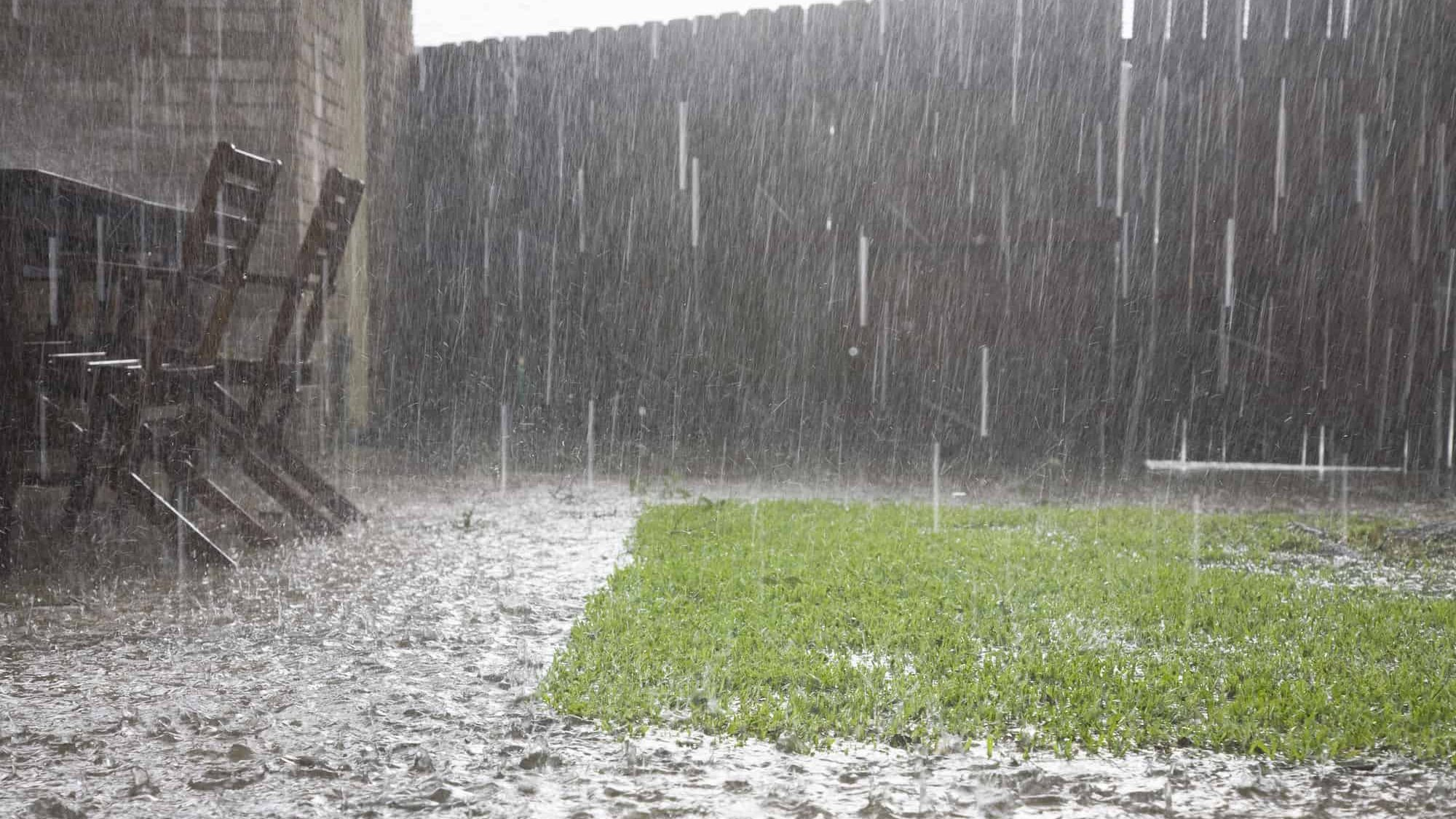 How To Protect Grass Seed From Heavy Rain