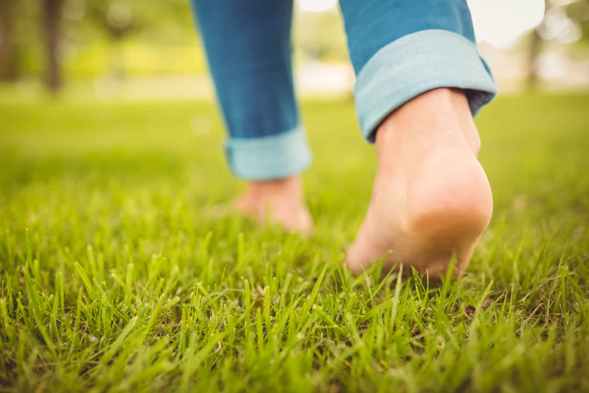 How Long After Planting Grass Seed Can You Walk On It
