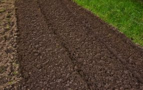 How to Prepare Rocky Soil for Grass Seed