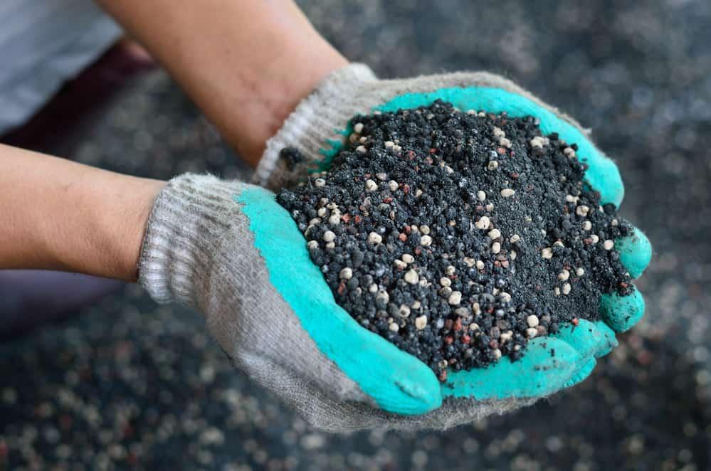 When To Use Triple 13 Fertilizer