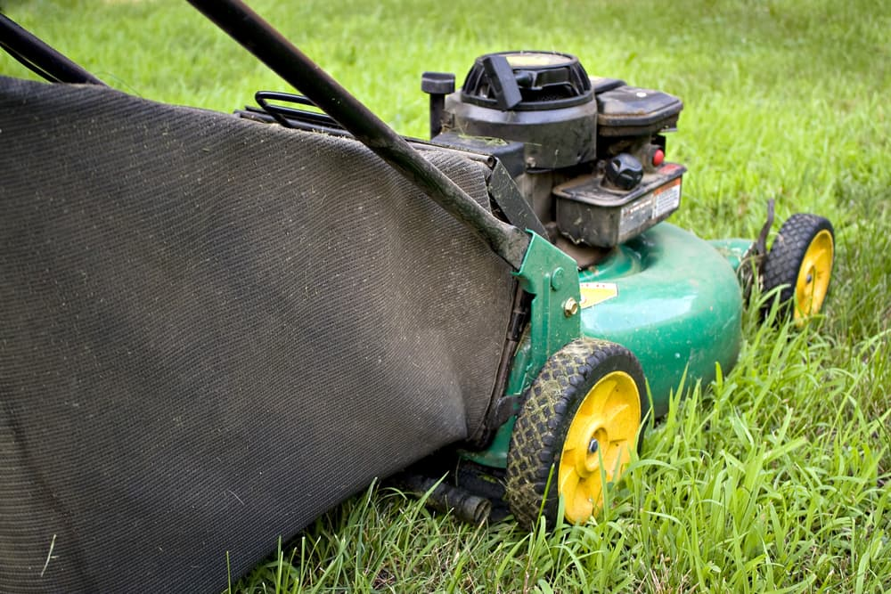 Bagging Grass Clippings