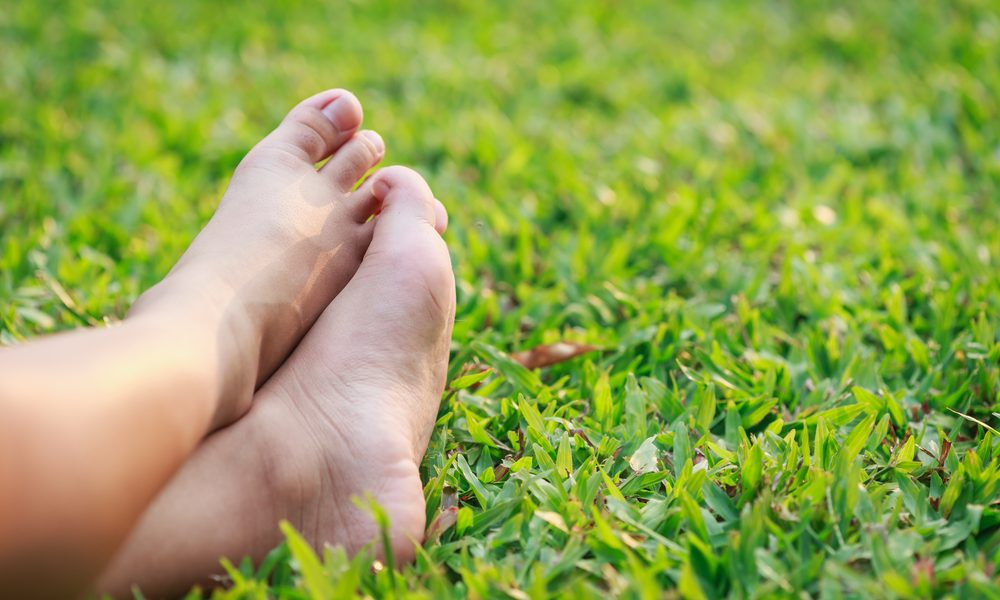 Lawn Nutrients