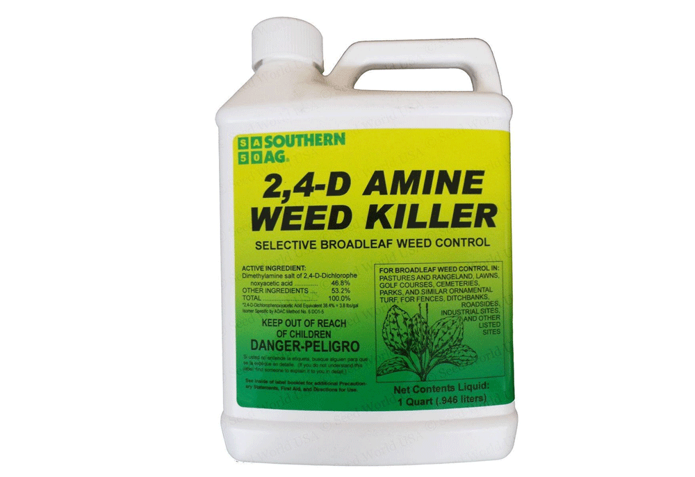 When To Apply 2,4-D To Your Lawn