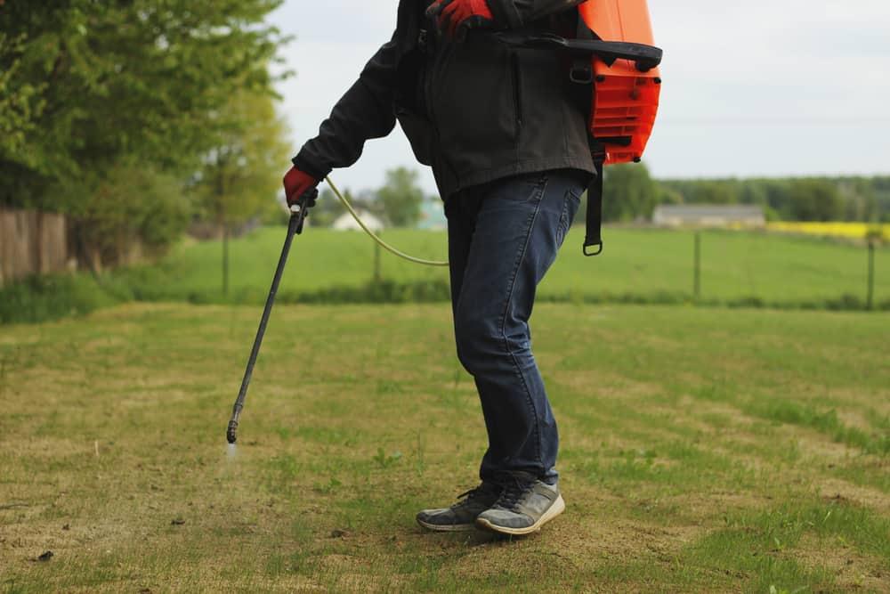 Diaphragm Backpack Sprayer
