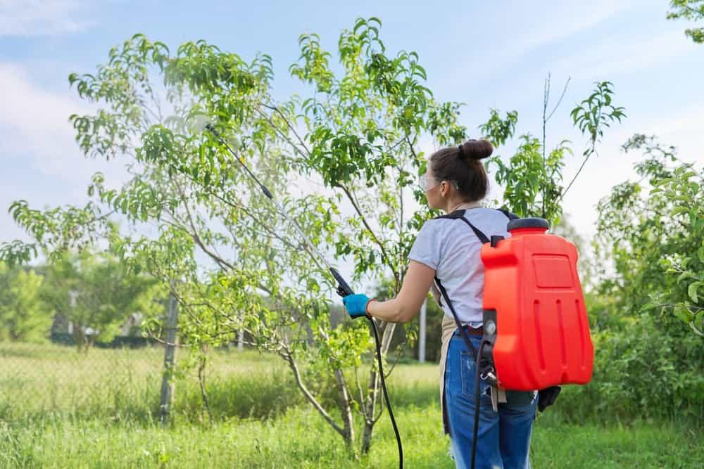 Piston Vs Diaphragm Backpack Sprayer Choosing The Right One