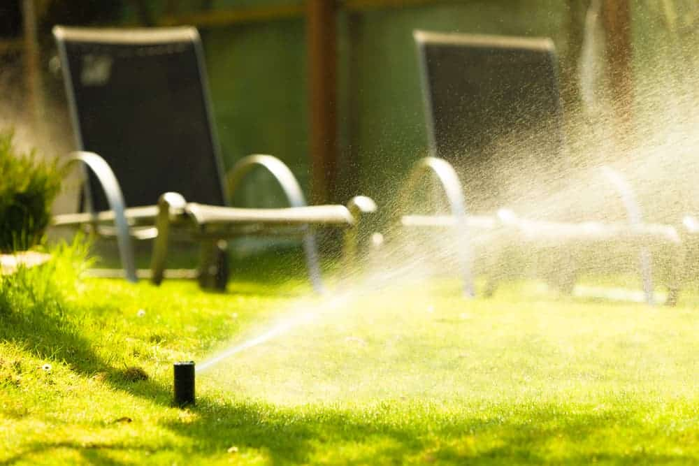 What Time Should Lawn Sprinklers Run