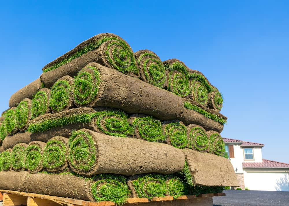 How Much Does A Roll Of Sod Weigh