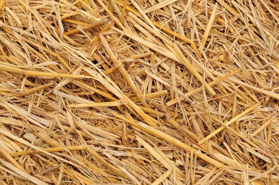 Mulch And Straw