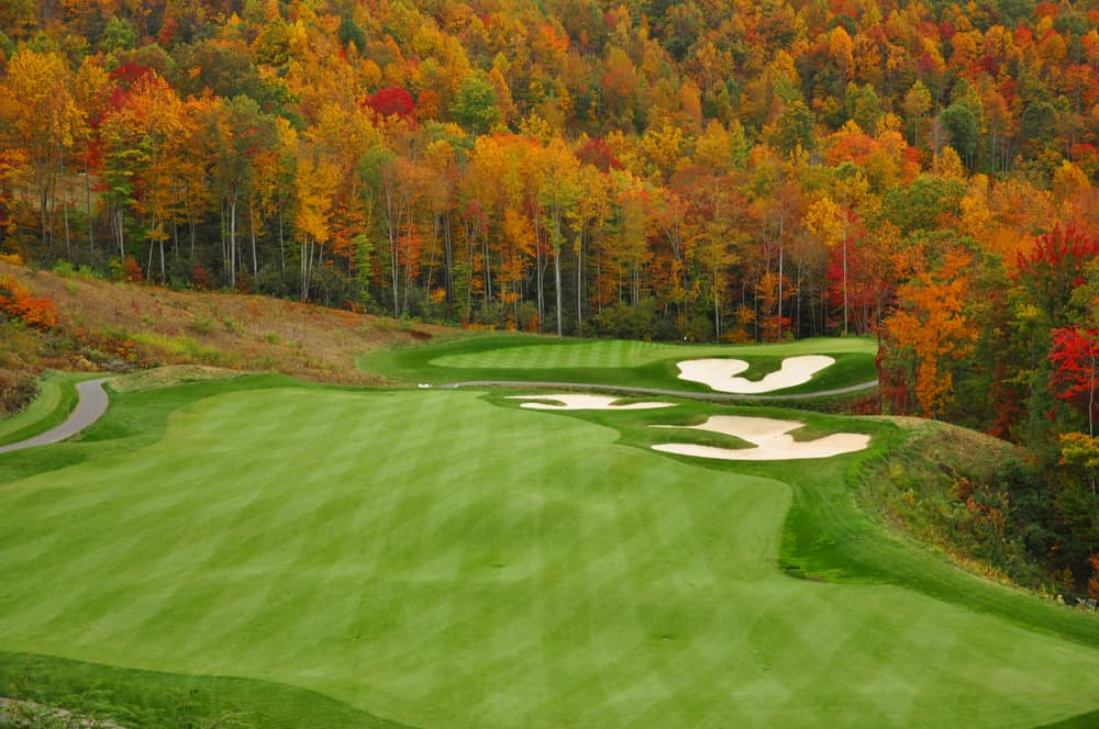 Types Of Golf Course Grasses
