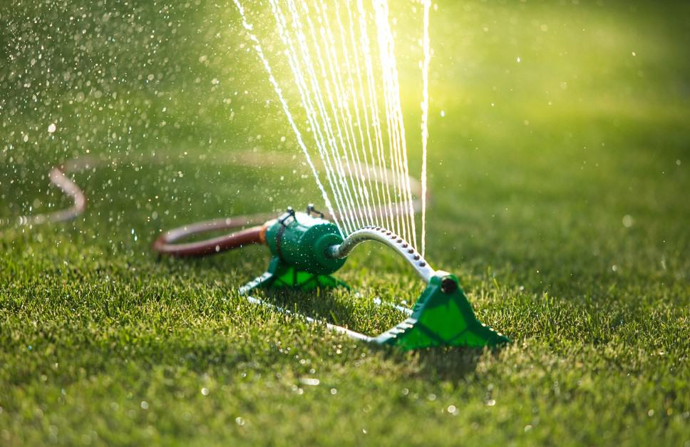 How Long To Wait To Water After Applying Weed Killer
