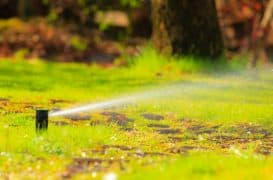 How Long to Water New Grass Seed With a Sprinkler?