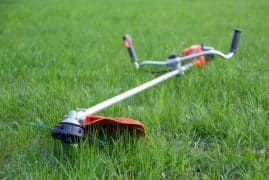 Lawn Edger vs Weed Wacker: What's The Difference?