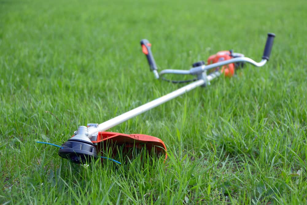 Lawn Edger Vs Weed Wacker What's The Difference