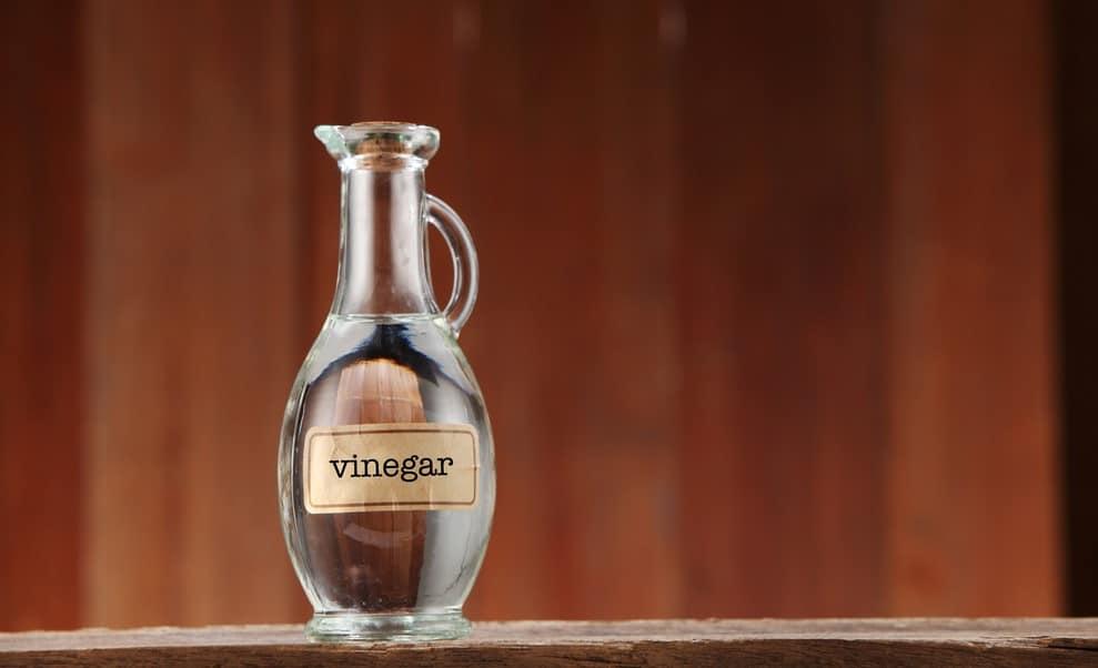 Vinegar On Winter Weeds
